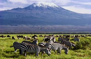 Mountain Kilimanjaro National Park