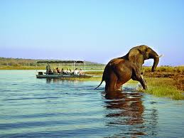 8 Days Botswana Safari