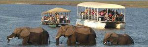 12 Days Camping Safari Botswana 3 Days Botswana Wildlife Safari