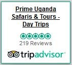 http://www.tripadvisor.com/Attraction_Review-g293841-d4723279-Reviews-Prime_Uganda_Safaris_Tours_Day_Trips-Kampala_Central_Region.html